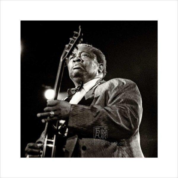 B.B. King - Photo: Frank Schindelbeck