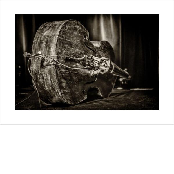 Bass 01 - Photo: Frank Schindelbeck Jazzfotografie
