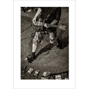 Bassist - Photo: Frank Schindelbeck Jazzfotografie