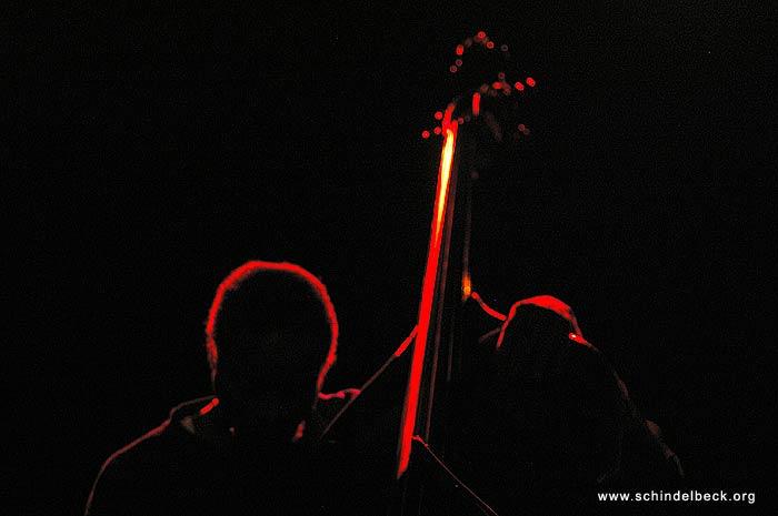 Bassist im Gegenlicht - Fotografie von Frank Schindelbeck Photography