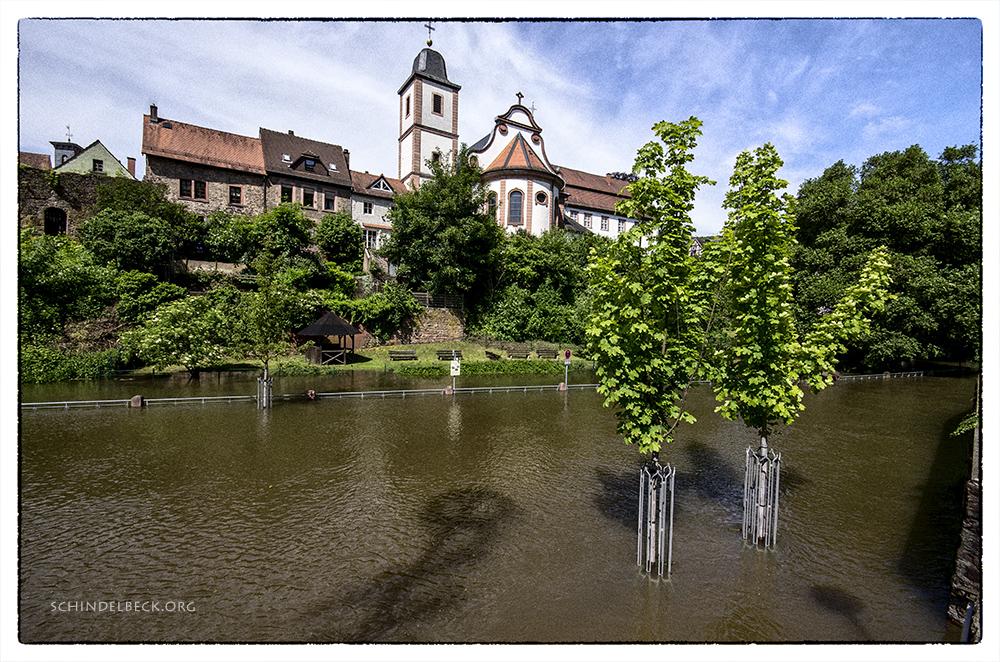 Neckarsteinach-Hochwasser-130602-Photo-Schindelbeck