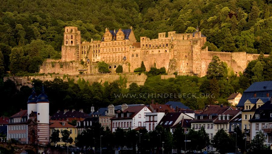 Heidelberger Schloss / Heidelberg Castle